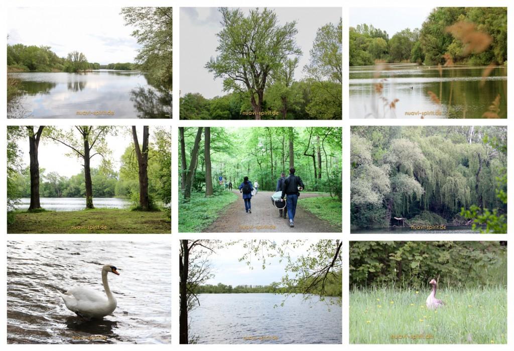 Fotos Trommelbau-Workshop am 09.05.2015 in Hannover